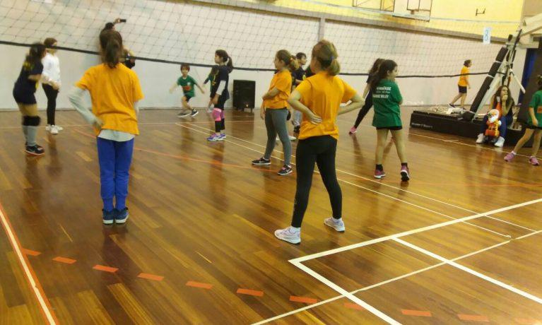Volley – Τουρνουά Ηλυσιακού